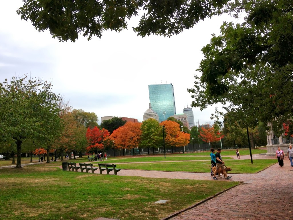 Boston Common, from Fall 2013. Photo by Zoe Rath.